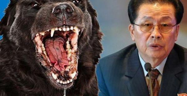 最終的にこの「空腹犬の刑」を決定した ! 彼にふさわしい...