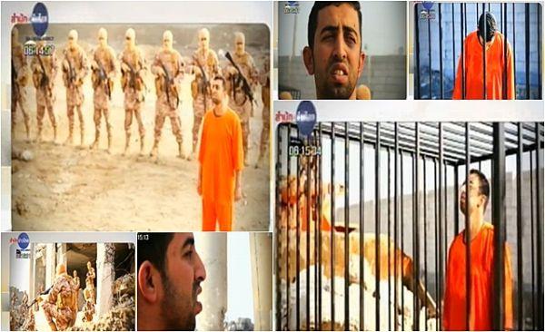 ヨルダン パイロットの殺害....生きて焼け ! 非道・卑劣極まりないテロ行為