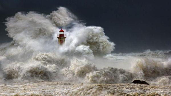 「嵐」....来たぞ !