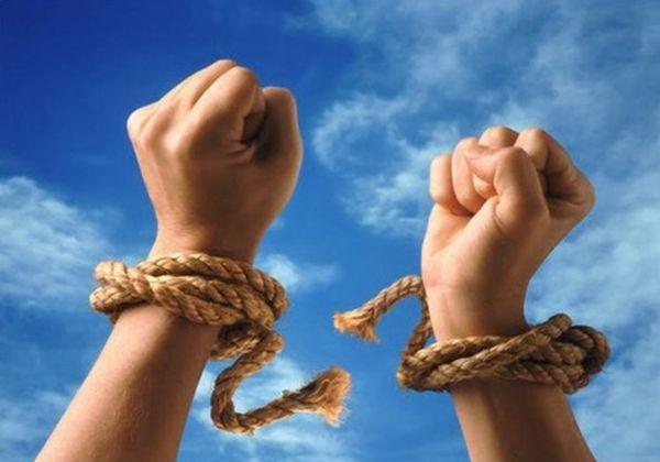 自由だ !!!