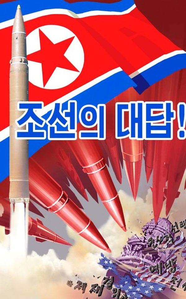 韓国と北朝鮮の「統一旗」....(*´◡`*) !