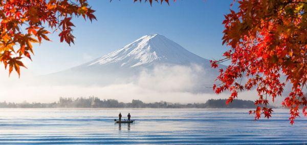 引き渡す手続きが終わると, 13人の子ども も日本で幸せな生活の新しい章を開く ! おめでとうございます !